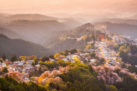 Hilltop Village - japanese, village, scenery, mountain, hill, nature, japan
