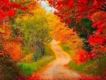 Red Yellow Path