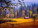 Lonely wooden hut in autumn mountain