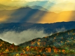 Amazing Smoky Mountains