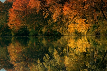 Autumn Reflection - colorful, lake, pond, autumn, forest, nature, reflection, trees