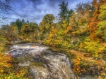 Rushing Forest River in Autumn