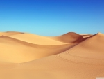 Algodones Dunes, California