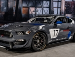 2017 Ford Mustang GT4