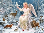 Winter Angel F2Cmp