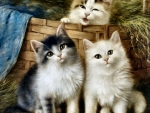 Three Little Kittens F