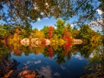 Fall Reflection in the River