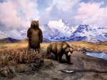 Alaska Brown Bear Diorama F