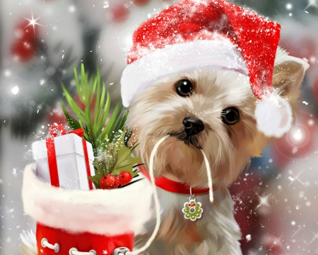 merry christmas dogs animals background wallpapers desktop nexus image 2192840