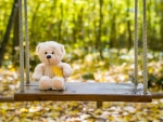 Autumn teddy