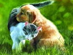 Perfect Friendship - Cat&Dog f