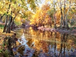 River in Autumn f