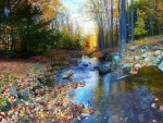 Autumn Leaves in the Small River