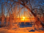 Glowing winter sunset
