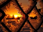 Frozen Winter Sunset