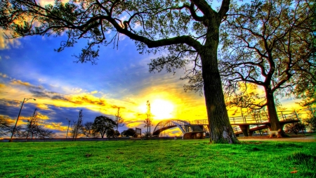 Sunshine Field - field, sunshine, grass, sun, sky, nature, bridge, trees