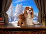 Cavalier king Charles Spaniels in winter