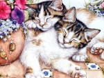 Sleeping Calico Cats F