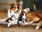 Dog and Kittens F
