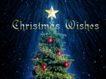 Christmas Wishes F