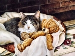 Tabby Cat and Teddy FC