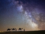 Milky Way and the desert