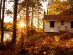 White Cottage in Autumn Forest