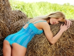 Hug The Hay..