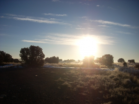 Escape into the Morning Light - desert, morning, high desert, sun, hill, trees