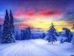 Colorful winter sky