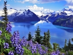 Garibaldi Lake,British Columbia