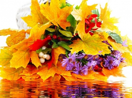 Autumn Beauty - nature, autumn, flowers, leaves, reflection, yellow