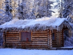 Snowy wooden cottage