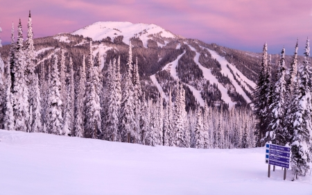 Winter Mountain at Sunset - Trees, Sunset, Snow, Mountain