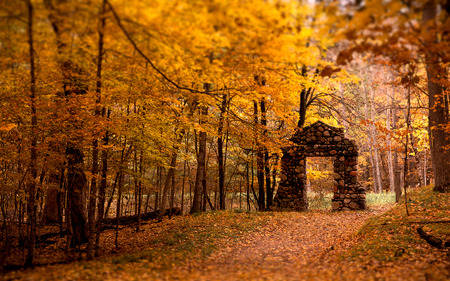 Old Stone  - autumn, nellisoft, leafs, tree, fall, england, forest, stone, wood, pathway, arch, stone arch, gate, way