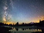 Serene Starry Night