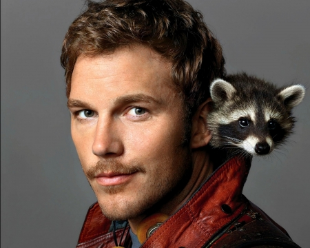 Chris Pratt - actor, man, Chris Pratt, raccoon, face