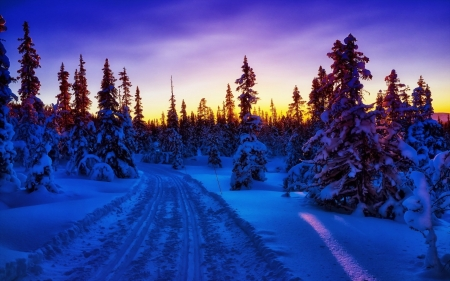 Winter Sunset - winter, sunset, road, snow, sky, nature, trees