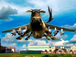 Airplane cow