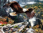 Mountain Flight - Eagle F