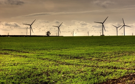 Wind Farm - clean, Wind Farm, modern, wind, energy, architecture