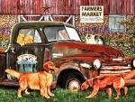 Woody Acres Dairy Farm - Dogs F