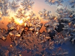 Frosty Sunset