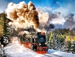 Steam Train F