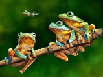 The Frog Companions F