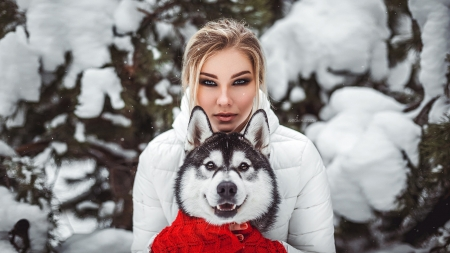 Best 25  Red husky ideas on Pinterest