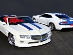 trans am and firebird