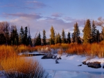 Spread Creek, Grand Tetons, Wyoming