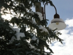 Street Light in Teton Village, Wyoming