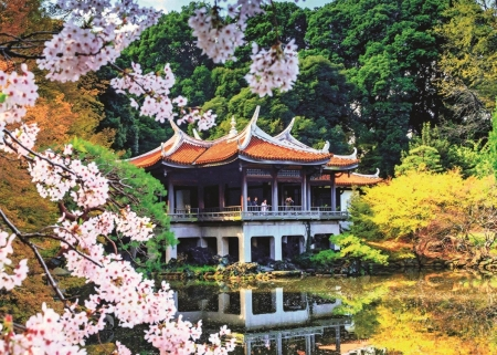 Spring Blossoms in Japan - pond, house, reflection, park